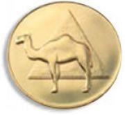 Camel 22k Gold Plated AA Medallion