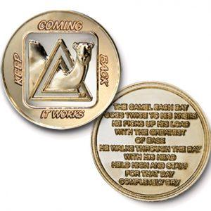 AA Sober Camel Bi-Plated Medallion