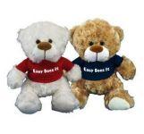 Recovery Bears