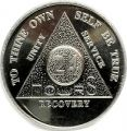All Styles AA 24 Hour Chips, Tokens, Medallions & Coins