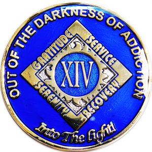 blue NA anniversary coin